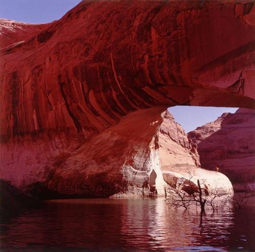 Whimsical Cliffs