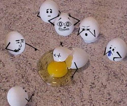 Egg 14